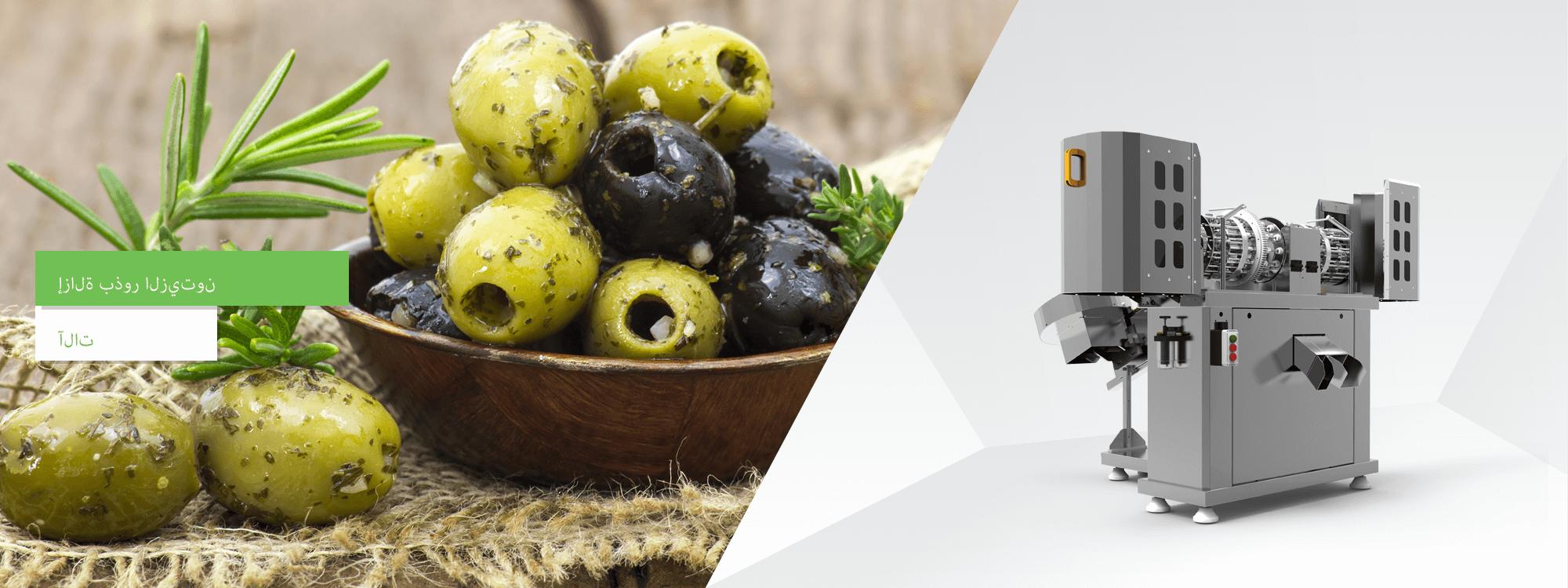 Zeytin Çekirdeği Çıkarma Makinaları AR