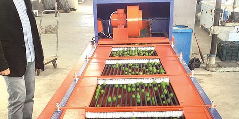 They named the unit of measure for olive, and their machine has reached to Australia